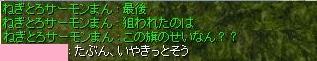 NNMR3.jpg