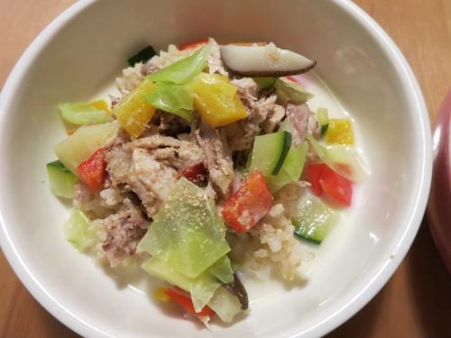夜ご飯 鶏軟骨×温野菜の山羊ミルクシチュー