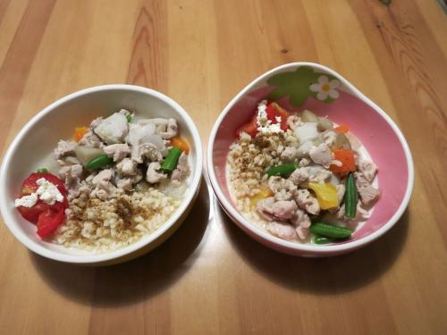 炊きたて玄米と胸肉と野菜の煮込み2人分
