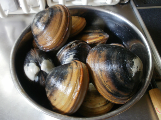 image-Clamming-2014071202.jpg