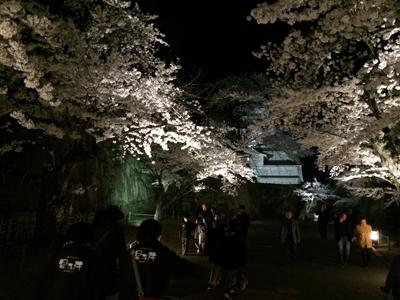 2014-04-24_9578.jpg