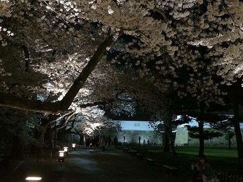 2014-04-24_9582.jpg