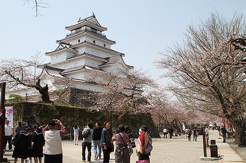鶴ヶ城桜040