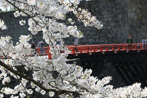 鶴ヶ城424-000