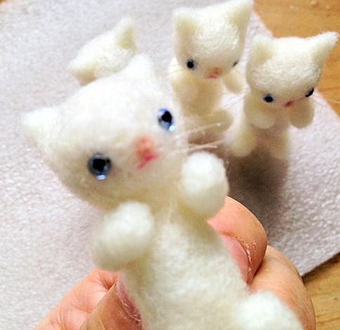羊毛猫白1