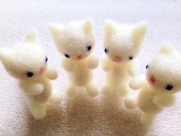 羊毛猫白2
