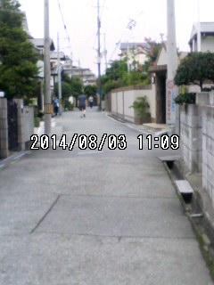 140803_1109~001