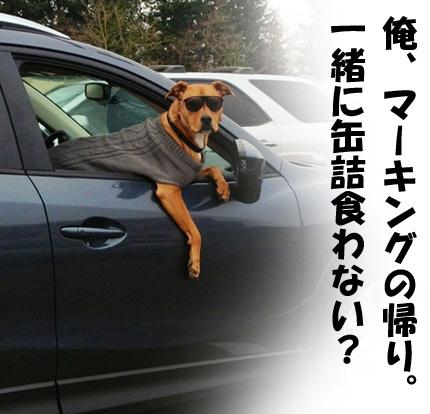 復縁 恋愛 片思い 奇跡 611