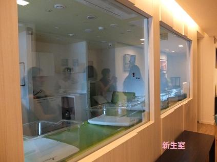 アモリウム 新生室