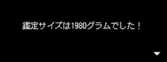1980g.jpg