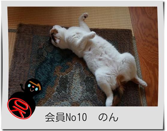 No10のん