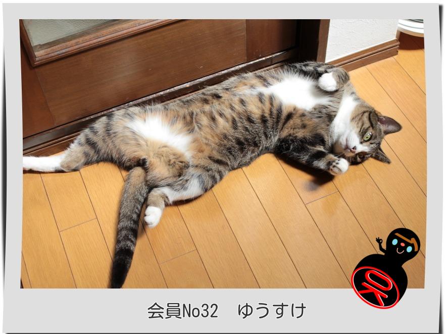 No32ゆうすけ