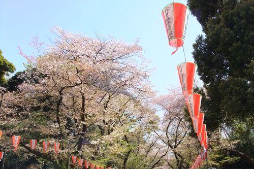 2014_0413_9.jpg