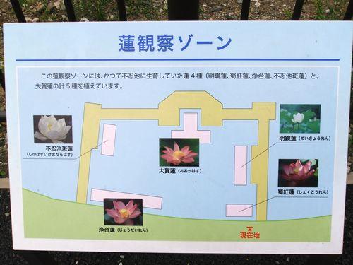 2014_0618_2.jpg