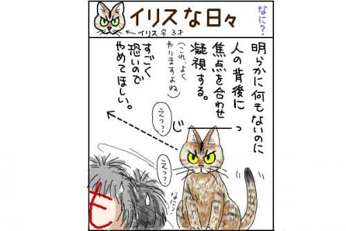 kaki_m_見る_convert_20140623012248