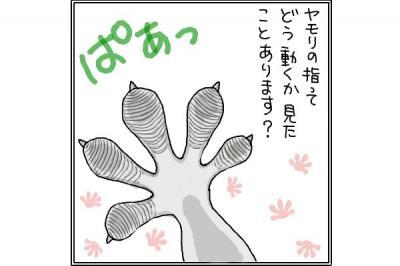 kaki_m_ヤモ1_convert_20140626222314
