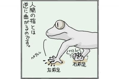 kaki_m_ヤモ4_convert_20140626222513