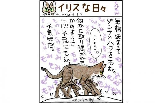 kaki_m_もみ_convert_20140628223105