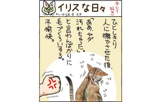 kaki_m_潔癖_convert_20140707215502