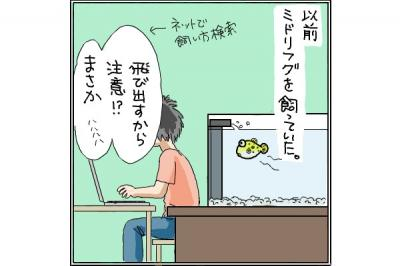 kaki_m_ふぐ1_convert_20140710005317