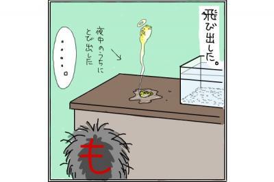 kaki_m_ふぐ2_convert_20140710005345
