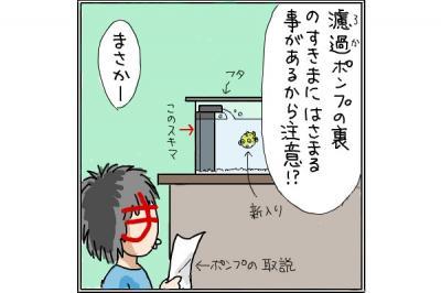 kaki_m_ふぐ3_convert_20140710005408