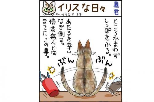 kaki_m_暴君_convert_20140712225333