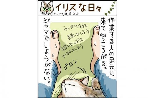 kaki_m_いやが_convert_20140715231543