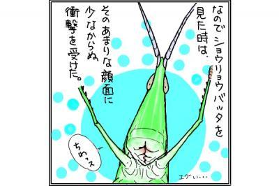 kaki_m_バッタ2_convert_20140721211014