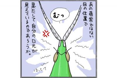 kaki_m_バッタ3_convert_20140721211038