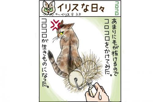 kaki_m_ころころ_convert_20140725194247