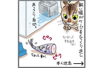 kaki_m_ヒョウモン3_convert_20140809213751