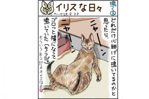 kaki_m_鳴く2_convert_20140809213839