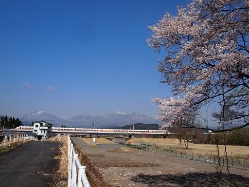 花見東武特急と男体山