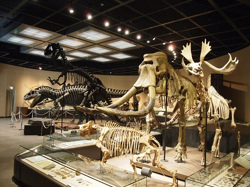 栃木県立博物館恐竜模型