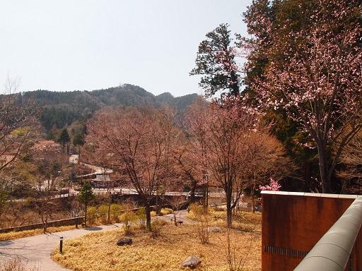 日光小杉放菴美術館から神橋