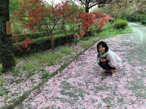 ぼたん桜よしちゃんしゃがむ