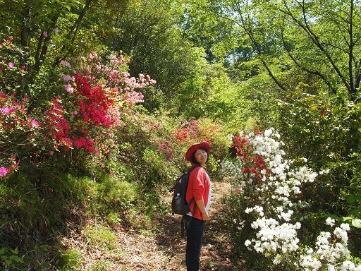 栃木植物園佳子