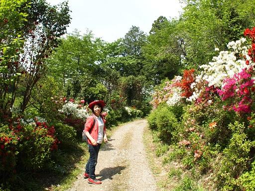 栃木植物園花の道佳子