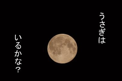 まん丸お月さん