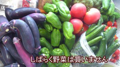 北海道野菜!