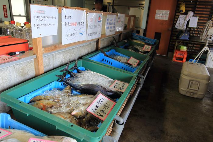 名護漁港 水産物直売所6