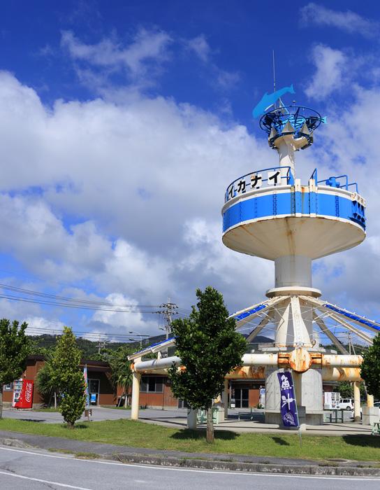 名護漁港 水産物直売所12