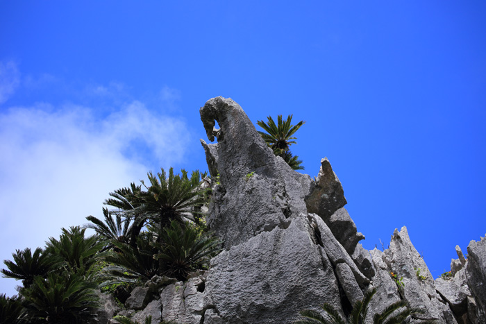 大石林山A16