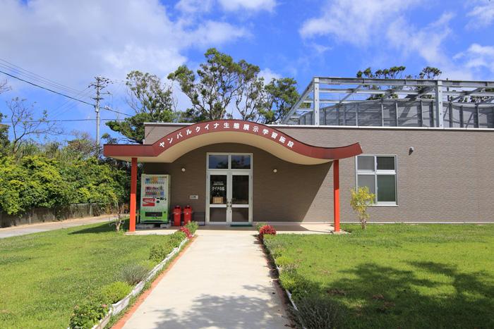 ヤンバルクイナ生態展示学習施設10