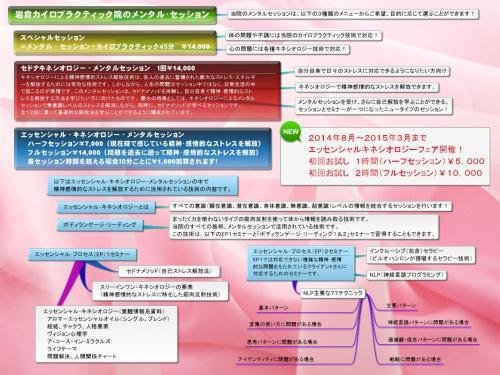 岩倉カイロプラクティック院HP メンタルセッションタブ_convert_20140803220241