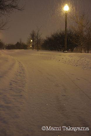 snowshowernotte10.jpeg