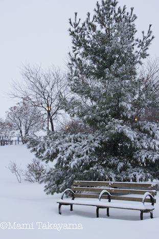 snowshowernotte2.jpeg