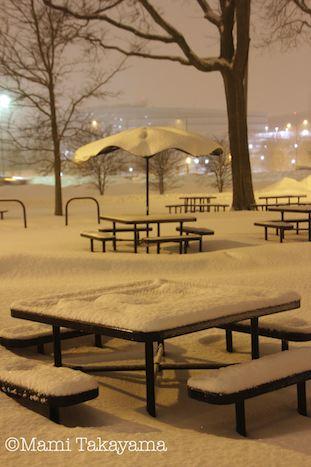 snowshowernotte5.jpeg