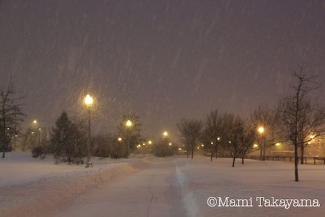 snowshowernotte6.jpeg